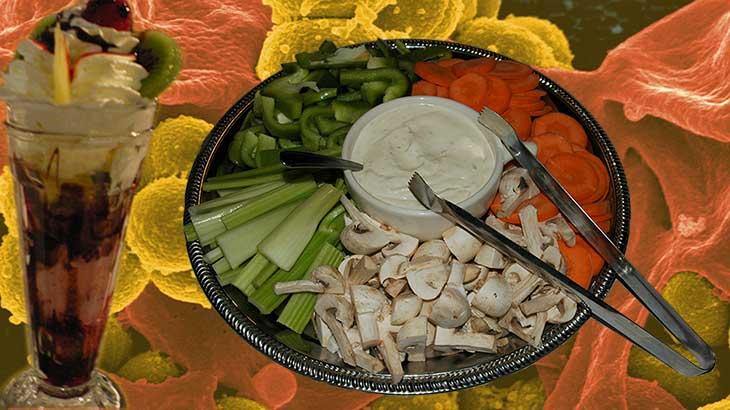 bacteriën en dieet